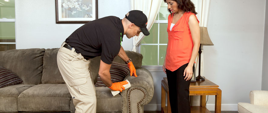 Mason City, IA carpet upholstery cleaning